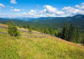 Summer mountain view — Stock Photo