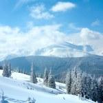 Snowy winter mountain landscape — Stock Photo #6181508