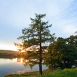 Summer sunset lake view — Stock Photo
