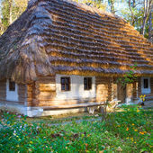 Historical country wooden hut with thatched roof — Stock Photo