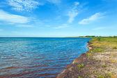 Summer coastline . — Stock Photo