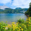 Alpine summer lake view — Stock Photo #6256700