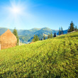 Summer mountain village outscirts — Stock Photo