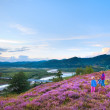 Summer heather flower hill and family on hill top — Stock Photo