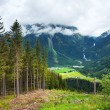 Alps waterfall summer view — Stock Photo #6466838