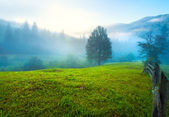 Hazy daybreak in mountain valley — Stock Photo