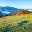 Autumn misty morning mountain hill - Stock Photo
