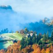 Autumn misty morning mountainside - Stock Photo