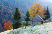 Autumn mountain view with shed — Stock Photo