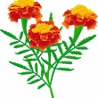 Marigolds — Stock Vector
