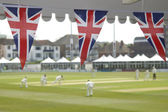 Bunting and cricket — Stock Photo