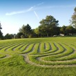 Grass maze — Stock Photo #5867637