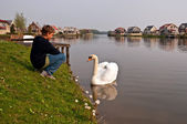 Boy and a swan. Holland . — Stock Photo