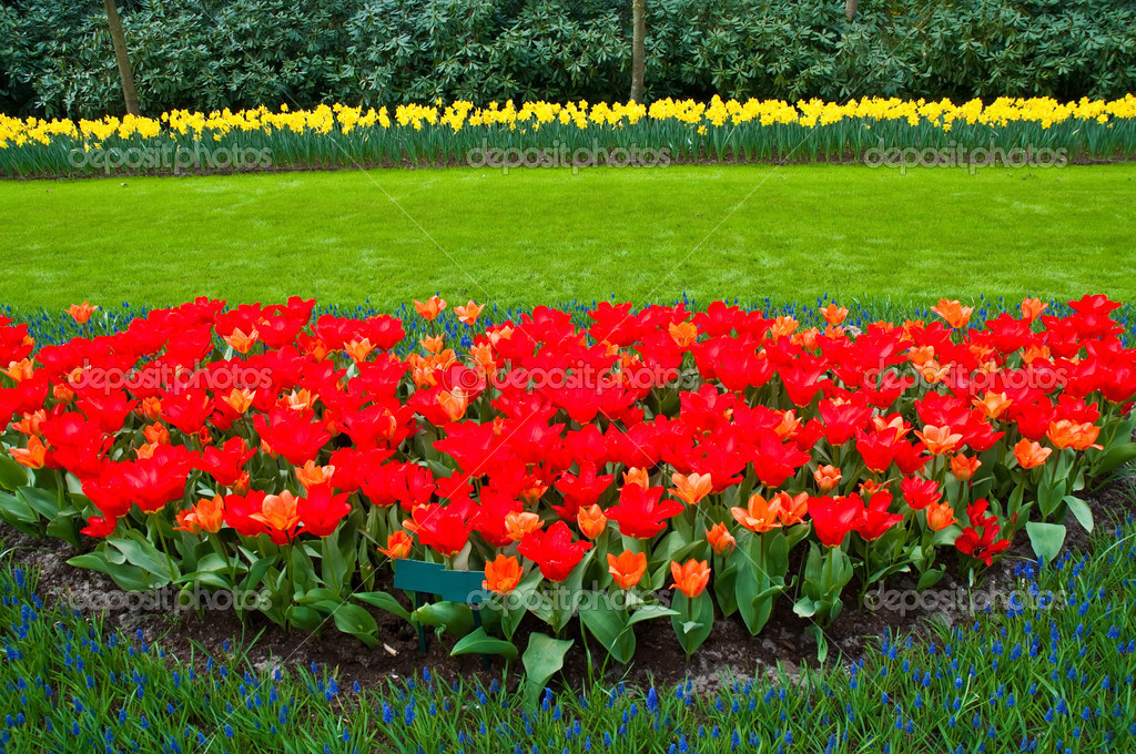 Keukenhof Gardens, Lisse, Netherlands . — Stock Photo #5531812