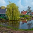Dutch  landscape . - Stock Photo