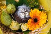 Spring flowers with easter eggs . — Zdjęcie stockowe
