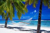 Hamaca entre palmeras en playa tropical — Foto de Stock