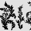 Royalty-Free Stock Vector Image: Black Vectorized Floral Elements
