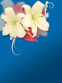 Soft Flowers On Blue Background — Stock Photo