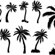 Stock Vector: Palm Trees Design Silhouettes
