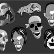 Isolated Skull Faces Illustration — Stock Vector