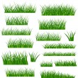 Green Grass Leaves — Stock Vector