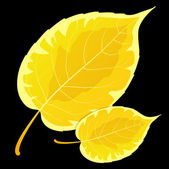 黄色枫叶在黑色背景上 — 图库矢量图片