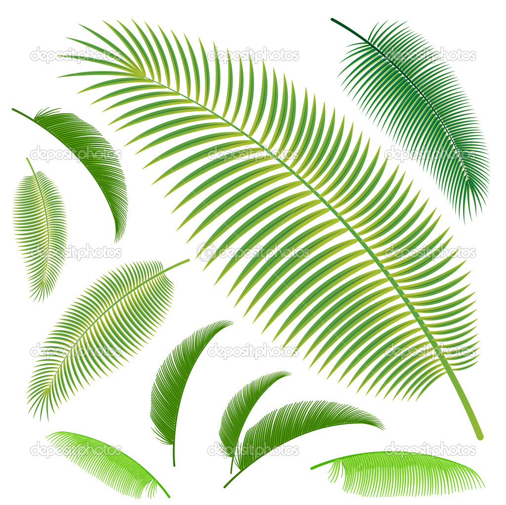 Palm Leaf Template http://www.tattoopins.com/1566/palm-leaf-template-free-angels-and-demons-tattoos/QjVBQjBBQkJGOUUzN0NFOUVEREMwOUFGNDlEMkQ0NTQ0NDk0MTc5RQ/