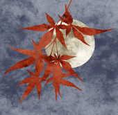 Autumn moon collage, paper texture — Stock Photo