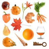 Orange objects collection — Stock Photo