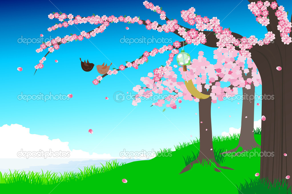 A vector illustration of a spring cherry blossom — Stock Vector #6490503