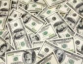 Cash dollars close up — Stock Photo