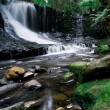 Horseshoe Falls - Stockfoto