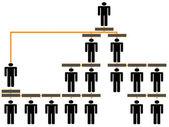 企業の階層グラフ — ストックベクタ