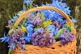 Basket of wild flowers — Stock Photo