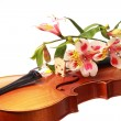 Stock Photo: Beautiful violin and some flowers