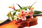 A close-up part of violin and some flowers — Stock Photo