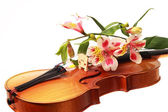 A beautiful violin and some flowers — Zdjęcie stockowe