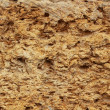 Sandstone as a background — Stock Photo