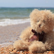Teddy bear on a beach holiday — Stock Photo