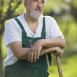 Photo: Portrait of a senior man gardening in his garden