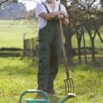 Portrait of a senior man gardening in his garden — Stock Photo #6148614