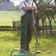 Portrait of a senior man gardening in his garden - Stock Photo