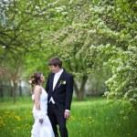 para młoda ślub - świeżo środa pana młodego i panny młodej, stanowiące o — Zdjęcie stockowe