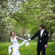 Young wedding couple - freshly wed groom and bride posing outdoo - Stok fotoğraf