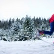 Young man cross-country skiing on a snowy forest trail (color to — Stock Photo #6149257