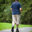 Active handsome senior man nordic walking outdoors on a forest p — Stock Photo