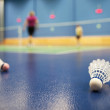 Badminton - badminton courts with players competing; shuttlecock - Stock Photo