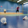 Badminton - badminton courts with players competing; shuttlecock - Foto Stock
