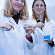 Royalty-Free Stock Photo: Two female researchers carrying out research in a chemistry/bioc